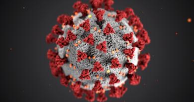 covid-19 virus decorative vector