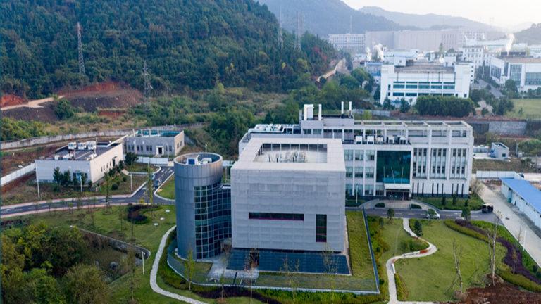 The Wuhan National Biosafety Level 4 Laboratory