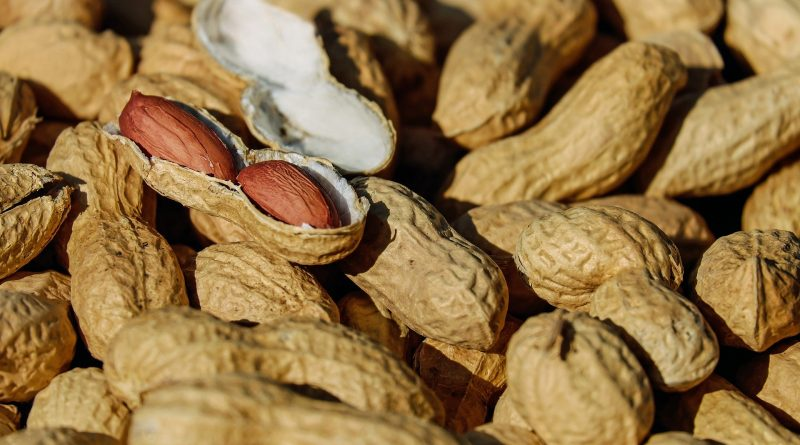 peanut allergy prevention