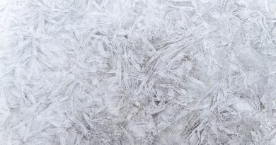 decorative ice