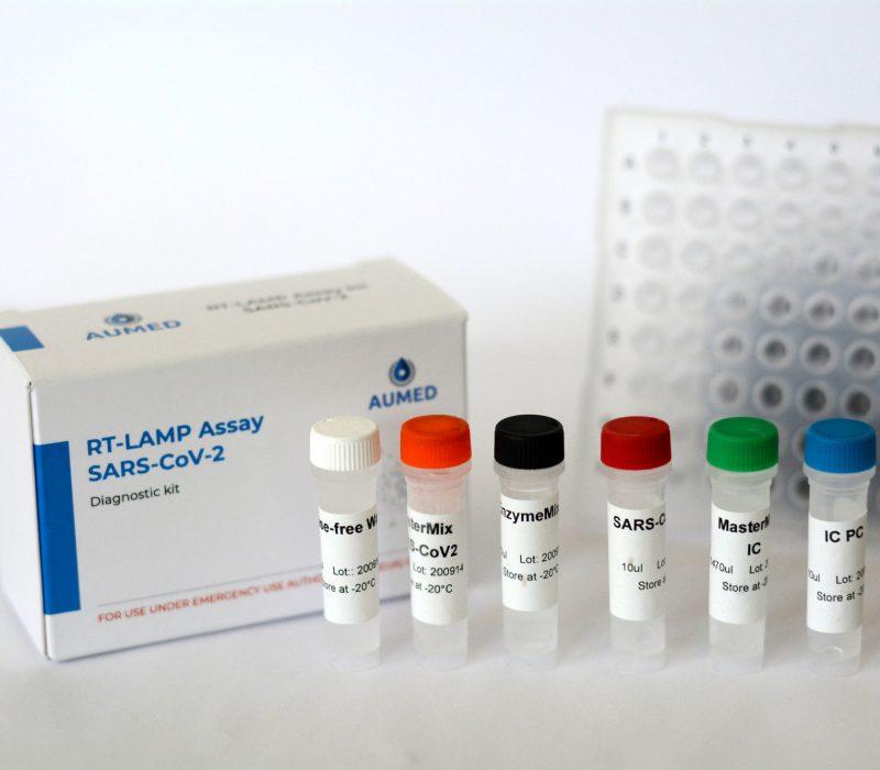 RT-LAMP Assay Kit for Diagnostics of SARS-CoV-2