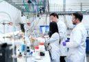 Moloney Murine Leukemia Virus Reverse Transcriptase (M-MLV RT)